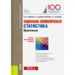 Социально-экономическая статистика. Практикум. (Бакалавриат). Учебно-практическое пособие