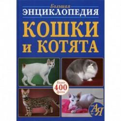 Большая энциклопедия. Кошки и котята от А до Я