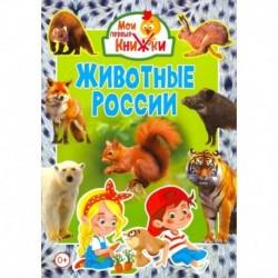 Животные России.