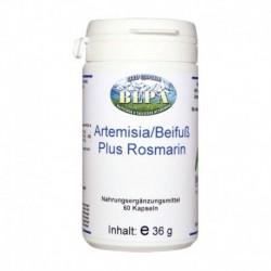 Artemisia/Beifuss plus Rosmarin. 60 Kapseln