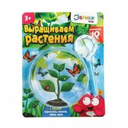 Набор для опытов «Выращиваем растение»: лупа, семена, тарелка, губка