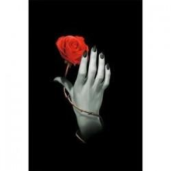 Дневник 'Роза в руке'