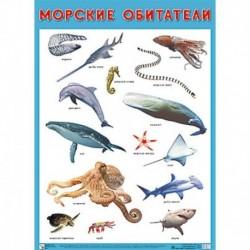 Плакат 'Морские обитатели'