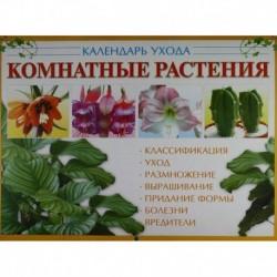 Комнатные растения: календарь ухода