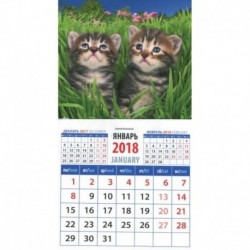 2018 Календарь 'Котята в траве' (20812)