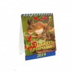 Календарь настольный на 2019 год 'Календарь природы' (10903)