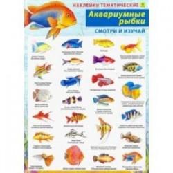 Аквариумные рыбки. Наклейки тематические