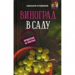 Виноград в саду. Проверено на практике