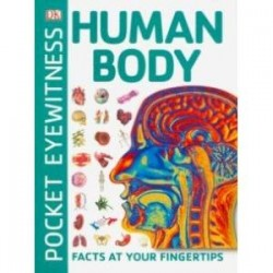 Human Body. Facts at Your Fingertips