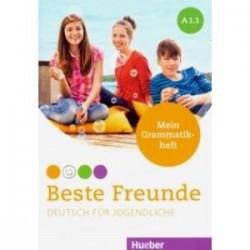 Beste Freunde. Deutsch fur Jugendliche. Mein Grammatikheft. A1.1