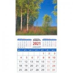 Календарь магнитный на 2021 год 'Очаровательный пейзаж с березами' (20113)