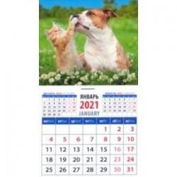 Календарь магнитный на 2021 год 'Не шуми' (20115)