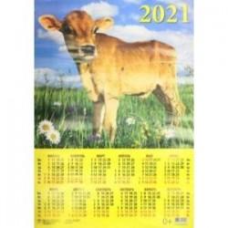 Календарь настенный на 2021 год 'Год быка. На лугу' (90123)