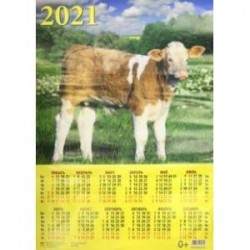 Календарь настенный на 2021 год 'Год быка. Симпатичный теленок' (90126)
