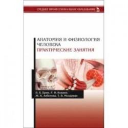 Анатомия и физиология человека. Практические занятия. Учебное пособие