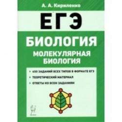 ЕГЭ Биология. Тренировочные задания. Молекулярная биология