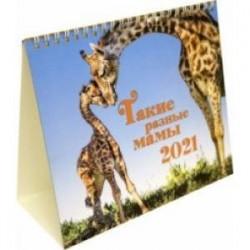 Календарь-домик на 2021 год (евро). Такие разные мамы