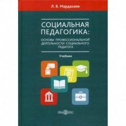 Социальная педагогика: основы профессиональной деятельности социального педагога