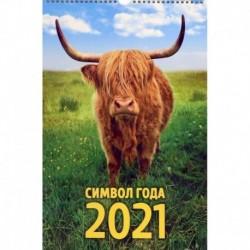 Календарь на 2021 год на спирали