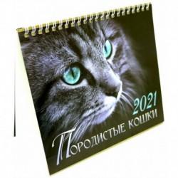 Календарь-домик на 2021 год. Породистые кошки