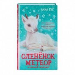 Оленёнок Метеор и зимний сюрприз!