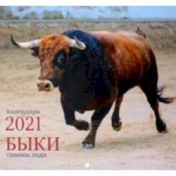 Календарь на 2021 год одноблочный средний 'Символ года. Дизайн 2' (КС122102)