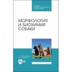 Морфология и биохимия собаки.СПО