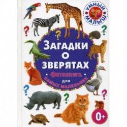 Загадки о зверятах