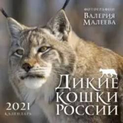 Дикие кошки России. Фотографии Валерия Малеева. Календарь настенный на 2021 год