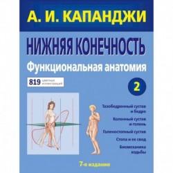 Нижняя конечность. Функциональная анатомия (обновленное издание)