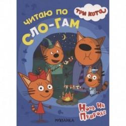 Три кота. Читаю по слогам. Ночь на природе