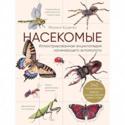 Насекомые. Иллюстрированная энциклопедия начинающего энтомолога. 240 популярных видов, которые обитают рядом с нами