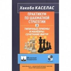 Практикум по шахматной стратегии-2.Типичные приёмы и манёвры:сочетание фигур
