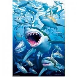 Пазл 'Стая акул' (500 деталей)
