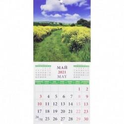 Календарь на 2021 год 'Очарование природы' (45105)