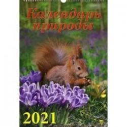 Календарь на 2021 год 'Календарь природы'