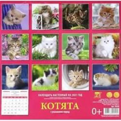 Календарь на 2021 год 'Котята'