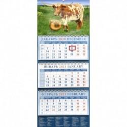 14118 2021 Календарь Год быка.Успешный год
