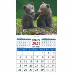 Календарь магнитный на 2021 год 'Веселые медвежата' (20119)