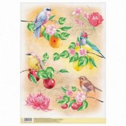 Декупажная карта «Райские птицы», 21 x 29,7 см