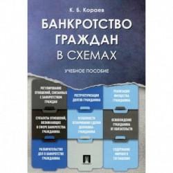 Банкротство граждан в схемах