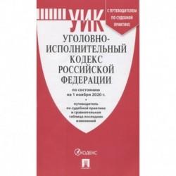 Уголовно-исполнительный кодекс Российской Федерации: по состоянию на 1 ноября 2020 г. + путеводитель по судебной