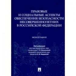 Правовые и социальные аспекты обеспечения безопасности несовершеннолетних в Российской Федерации
