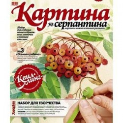 Набор №3 'Осенняя Рябина' (967003)