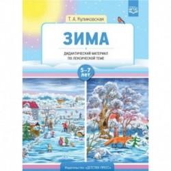 Зима. Дидактический материал по лексической теме 7-8 класс