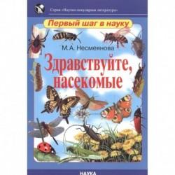 Здравствуйте, насекомые