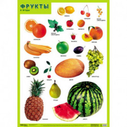 Фрукты и ягоды . Развивающие плакаты