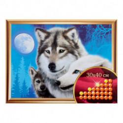 Алмазная вышивка с частичным заполнением «Волки», 30 x 40 см. Набор для творчества