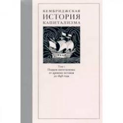 Кембриджская история капитализма. Том 1. Подъем капитализма. От древних истоков до 1848 года