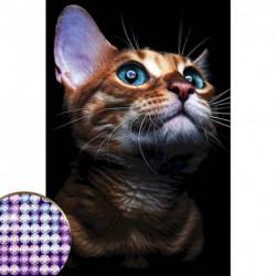 Алмазная вышивка с частичным заполнением «Взгляд кошки» 20 x 30 см на холсте